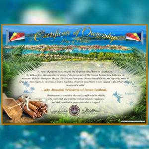certificate seychelles